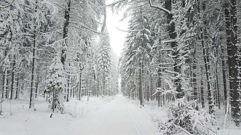 Vogelsberg Schnee